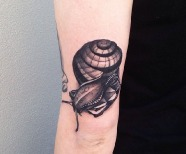 Amazing looking snail tattoo