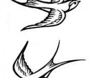 Black Sparrow Tattoo