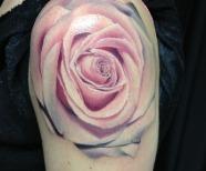Incredible pink roses tattoos