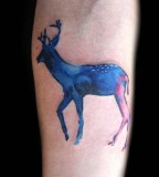 watercolor tattoo design deer