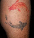 watercolor tattoo design koi fish yin yang