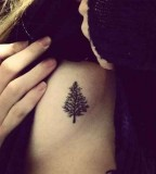nature tattoo fir tree on ribs