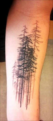 Evergreen Tree Tattoo Sleeve
