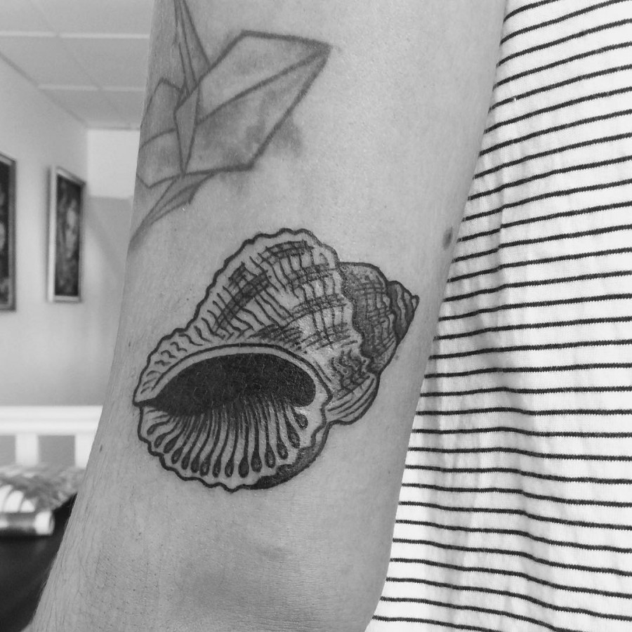 blackwork seashell tattoo by armelle stb