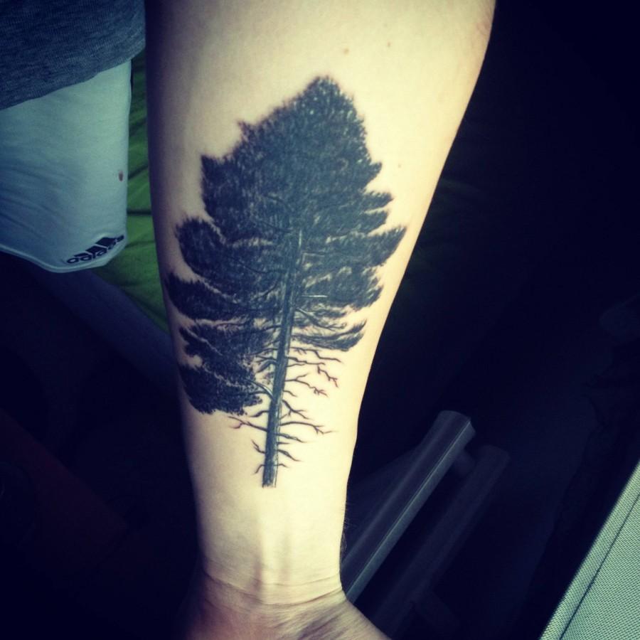 cool pine tree tattoo tattoomagz. Black Bedroom Furniture Sets. Home Design Ideas