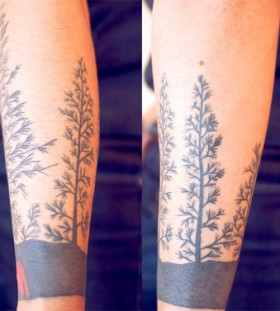 Lovely pine tree and wolf tattoo