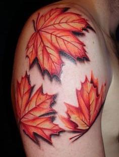 Nice maple leaves arm tattoo