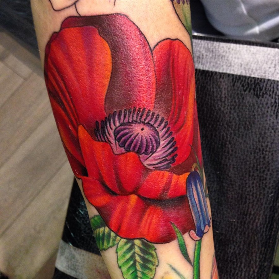 poppy flower tattoo by amy autumn