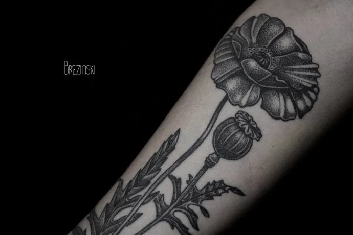poppy tattoo by brezinski