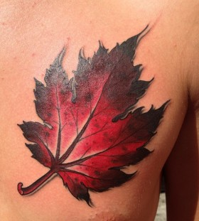 Red maple leaf chest tattoo