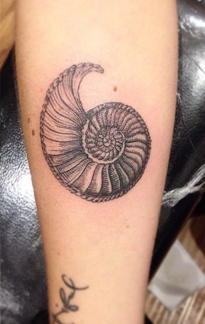 shell tattoo by kylie james
