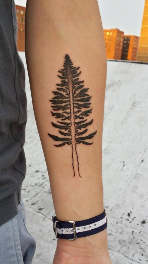 Simple tree tattoo by Rachel Hauer - TattooMagz