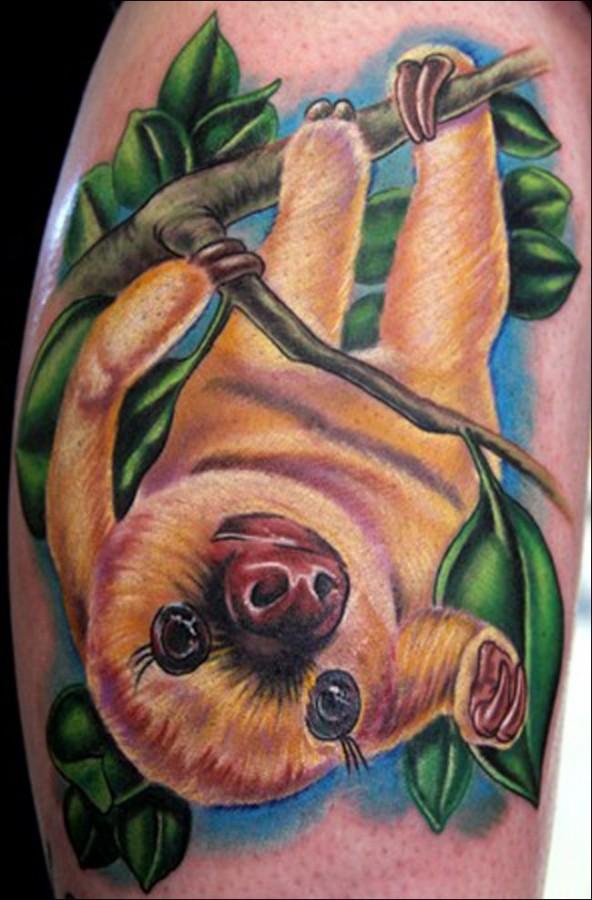 sloth on a branch tattoo. Black Bedroom Furniture Sets. Home Design Ideas
