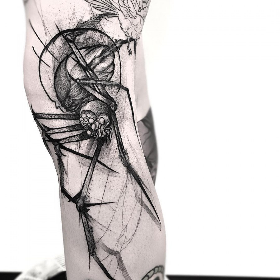 spider sketch style tattoo by frank carrilho