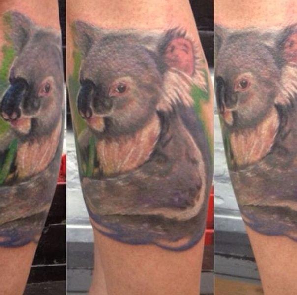Sweet Koala Bear Tattoo Tattoomagz