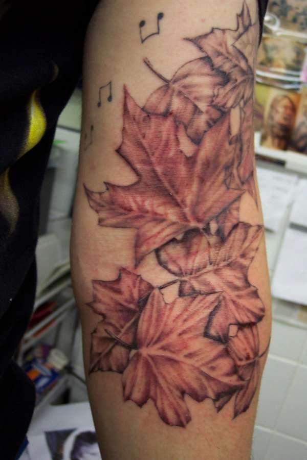 Maple Tree Tattoos: Sweet Maple Leaves Tattoo