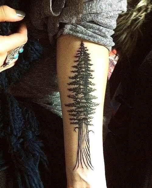 Simple Arm's Nature Tattoos