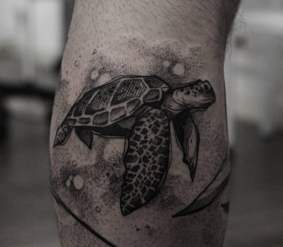 turtle tattoo by ricardo da maia