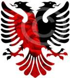 Albanian Eagle Tattoos Sketch