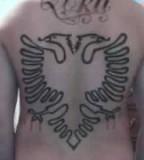 Original Albanian Eagle Tattoo