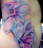 Beautiful Aster Flower Tattoo Design