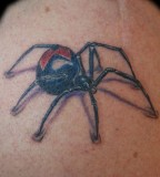 James Cook Black Widow Tattoo Design
