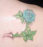 Small Blue Rose Tattoo Design on Shoulder