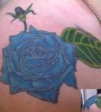 Blue Rose Tattoo on Shoulder By Arsenicbreathmint