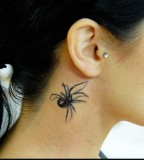 Latest New 3d Tattoos Spider Designs