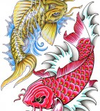Japanese And Chinese Koi Fish Tattoo Design