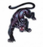 Panther Tattoos Pictures And Images Page 36