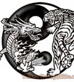 Beautiful Yin and Yang Dragon Tiger Tattoo