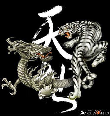 Dragon Versus Tiger Tattoo Sample Tattoomagz