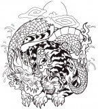 The Fighting Dragon Tiger Tattoo Pictures