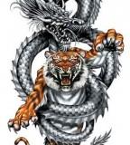 Crouching Tiger Hidden Dragon Tattoo Sample