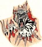 Tiger Tattoo Deviantart