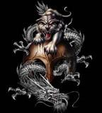 Top Chinese Tiger And Dragon Tattoo