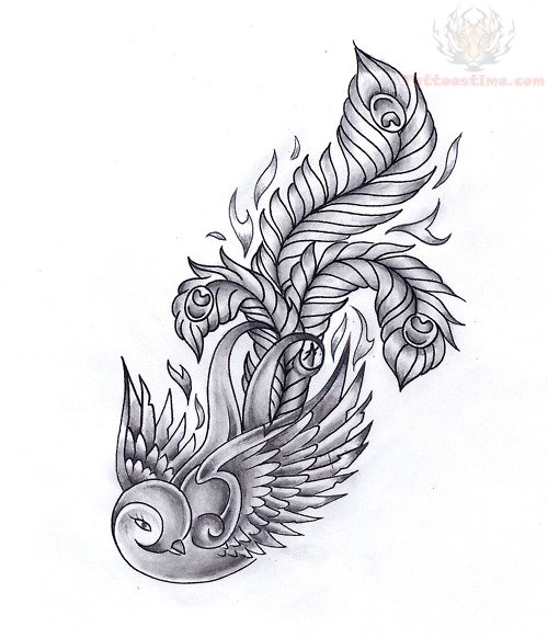 Stunning Swallow Feather Tattoo Drawing Design Tattoomagz