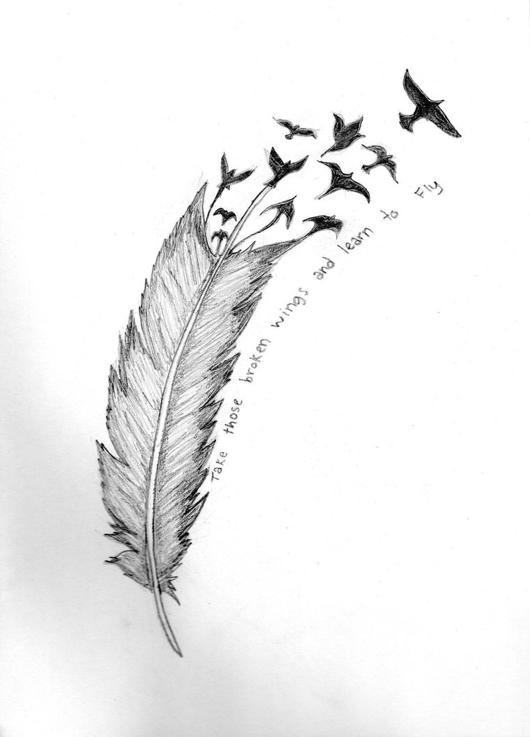 Creative Feather Bird Tattoo Photo