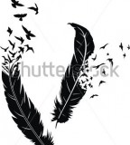 Two Stylized Feathers With Scattering Birds