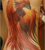 Superb Colored Phoenix Bird Tattoo Photo On The Full Back
