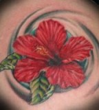 Red Hibiscus Tattoos Designs And Ideas
