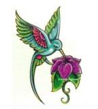Hummingbird Tattoo Design Sketch