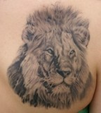 Beautiful Tattoo Lion Leo Tattoo