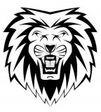 Lion Face Vectors Illustration