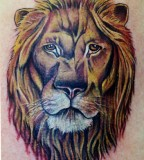 Animal Wildlife Tattoos Lion Face