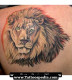 Awesome Lion Tattoo Designs - Animal Tattoos