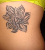 Magnolia Flower  Tattoo Picture At Checkoutmyink