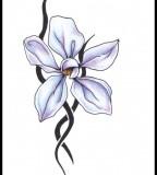 Simson Tattoo