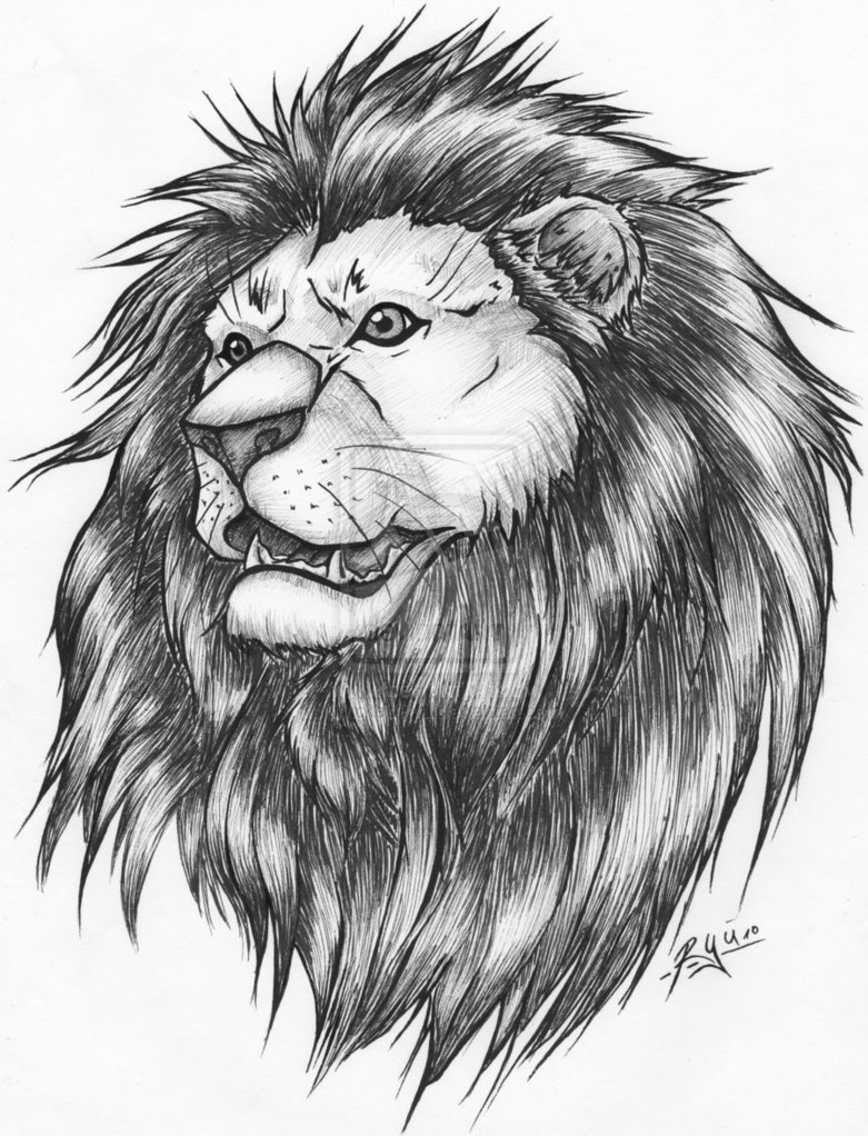 21 Awesome Lion Tattoo Ideas For Women 21 Awesome Lion Tattoo Ideas For Women new photo